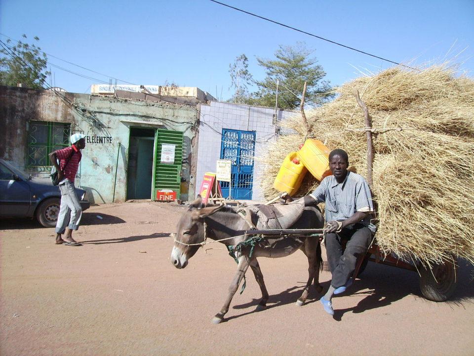dotando con una sede adaptada a sus actividades: 4 aulas de alfabetización en los pueblos de Sakabi, Kimidougou, Wara y Samandeni; y la perforación de tres pozo de agua potable en los pueblos de Kimidougou, Samndeni y Wara.