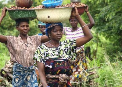 (2010) «Promoción de mujeres productoras de karité en la zona rural Tanghin-Dassouri»