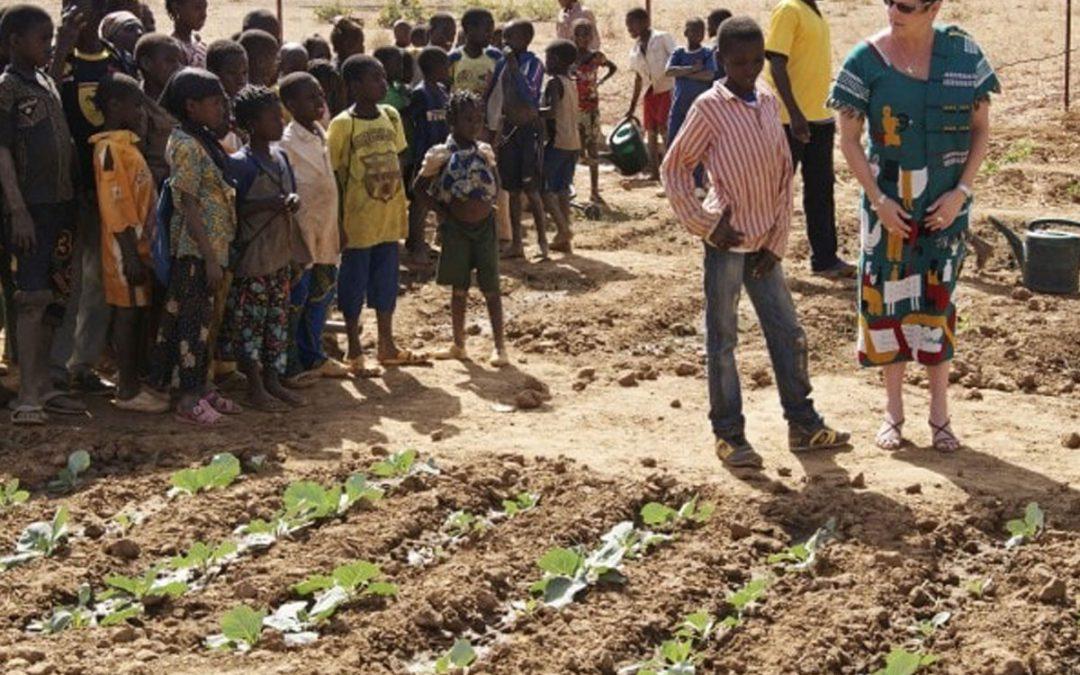 2012-2013. Centro de formación profesional y técnica de juventud desescolarizada en agricultura y ganadería en Tanseigha