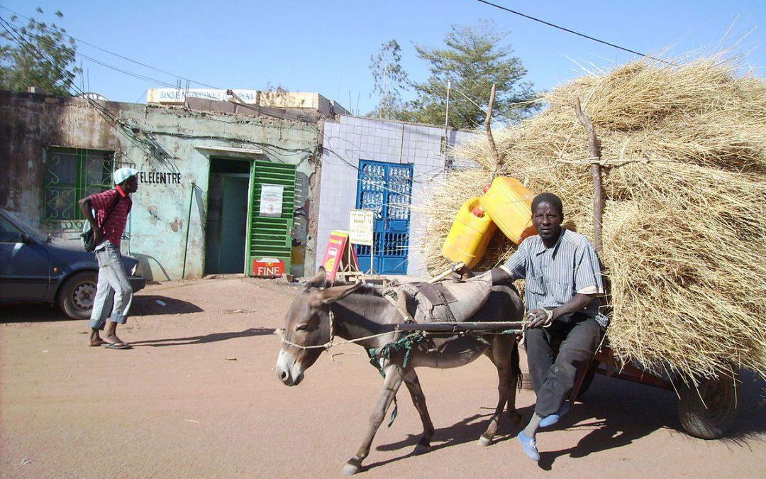 2007-2008. Proyecto de infraestructuras para el apoyo de la organización local Unión Dogorí. Región de Bobo-Dioulasso