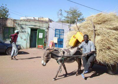 (2007-2008) «Proyecto de infraestructuras para el apoyo de la organización local Unión Dogorí. Región de Bobo-Dioulasso»